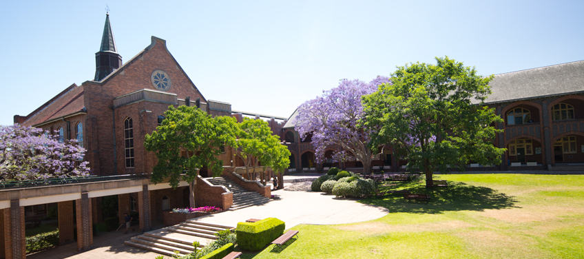 Pymble Ladies' College Jacaranda Tree